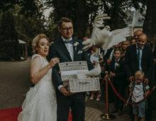 reportaż ślubny # 73